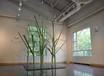 Turfgrass: Anne Marie Installation